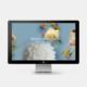 Institut für ästhetische Medizin Webseite Startseite